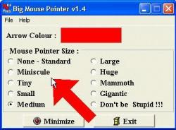 Big Mouse Pointer