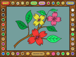 Coloring book 4: Plants