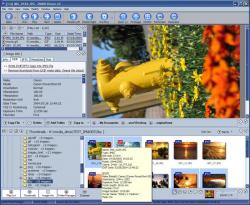 Dimin Image Viewer n5